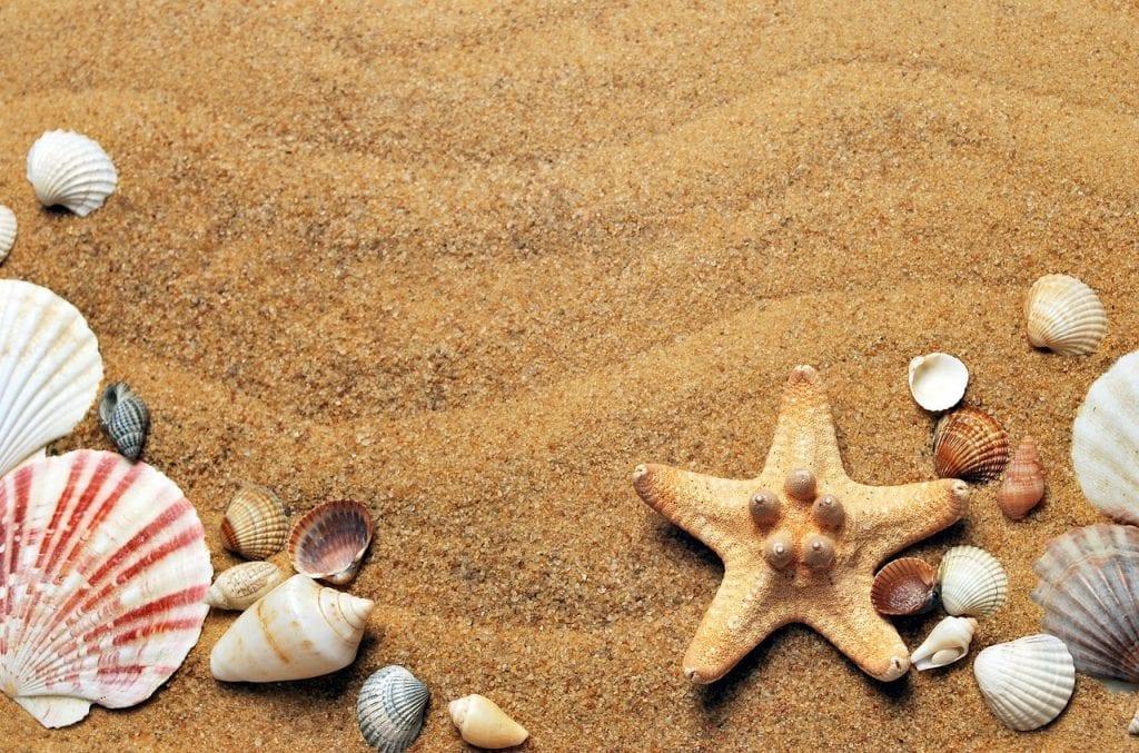 Comment réaliser de vraies économies pendant les vacances