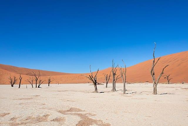 Escapades en Afrique : les meilleurs paysages à découvrir