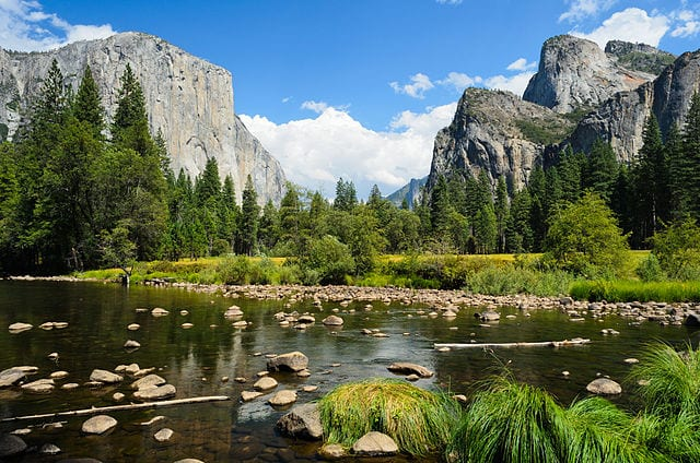 Travel in nature: 3 national parks to visit in California
