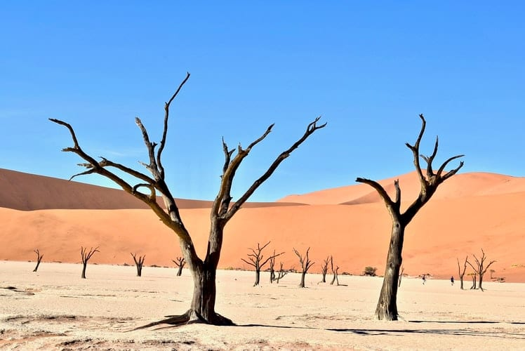 dunes de Sossusvlei, en Namibie
