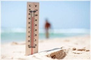 Tips for surviving a heat wave